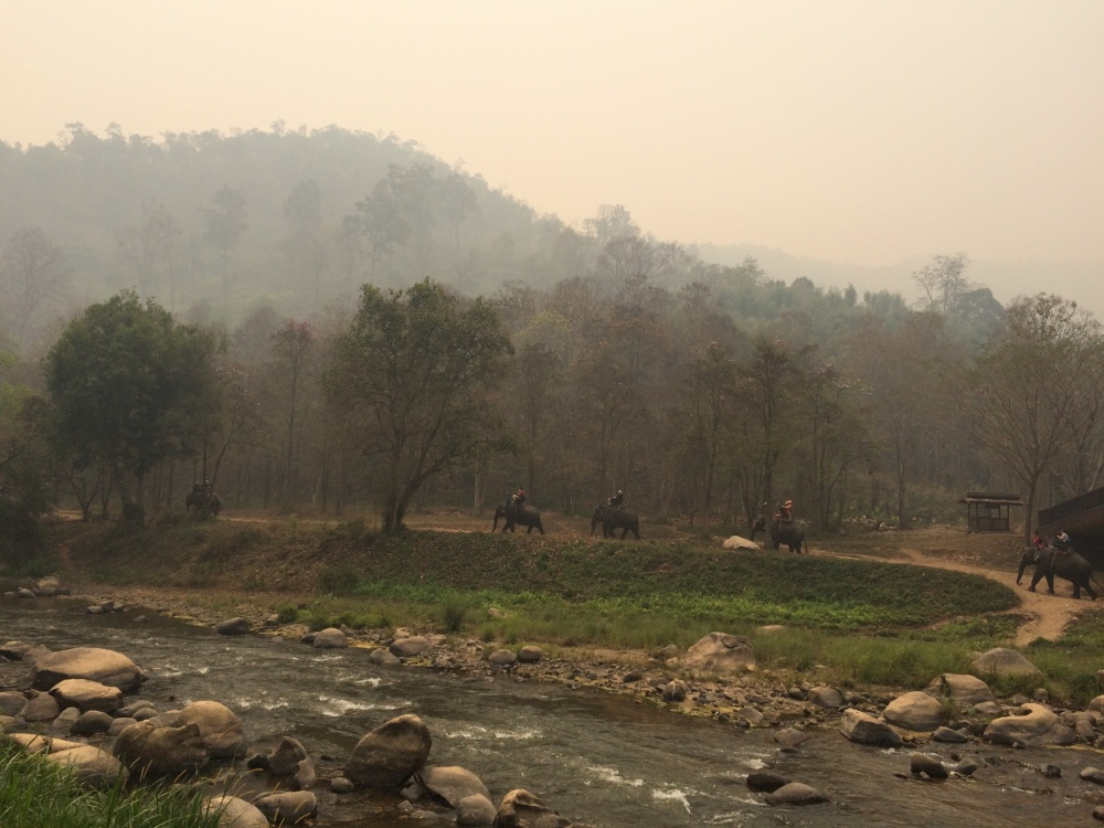 Chiang Mai, Thailand with Kids: Days 1-3 (2/3)